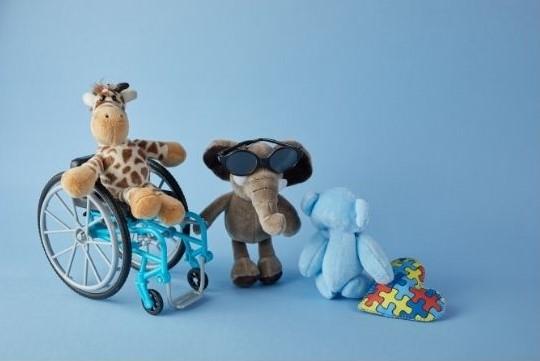 Journée internationale des personnes en situation de handicap
